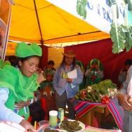 Fair Trade Markt